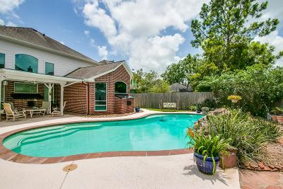 Friendswood Single Family Home For Sale: 2838 Love Lane