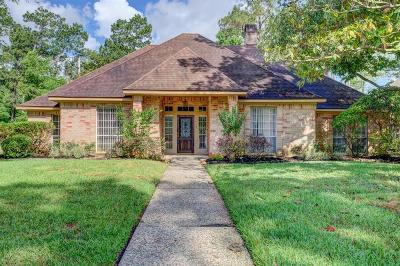 Houston Single Family Home For Sale: 5819 Beacon Falls Drive