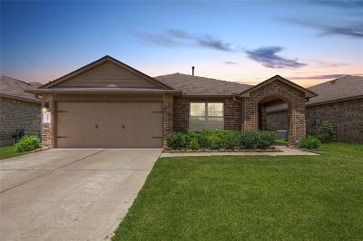 Katy Single Family Home For Sale: 2910 Iron Range Court