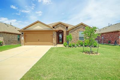 Katy Single Family Home For Sale: 29214 Jacobs River Drive