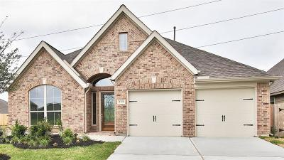 Pearland Single Family Home For Sale: 3111 Primrose Canyon Lane