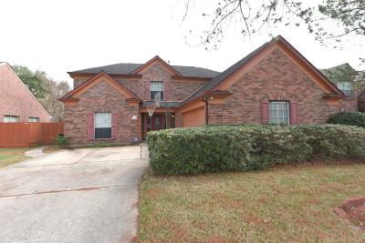 Sugar Land Single Family Home For Sale: 2330 Burkdale Drive