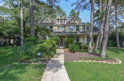 Galveston County, Harris County Single Family Home For Sale: 15902 Creek Hill Lane