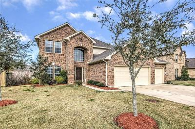 Dickinson Single Family Home For Sale: 2874 Flower Creek Lane
