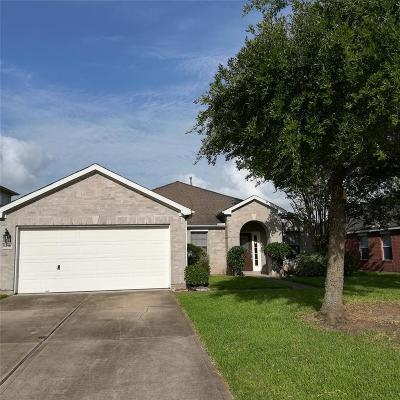 Sugar Land Single Family Home For Sale: 5218 Meadow Canyon Drive Drive