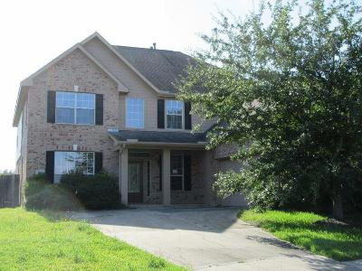 Pearland Single Family Home For Sale: 1802 Brinton Spring Lane