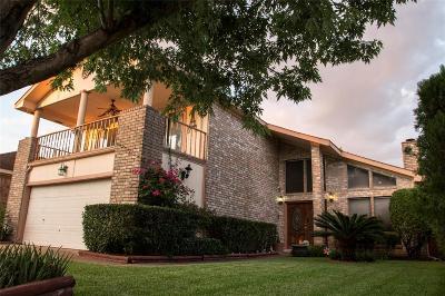 Houston Single Family Home For Sale: 3107 Hazy Park Drive