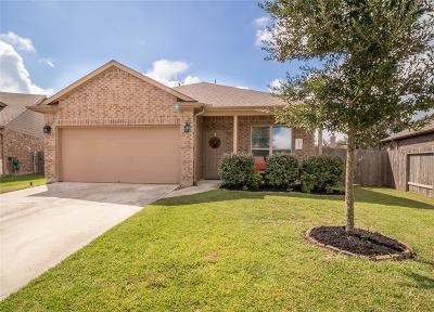 Porter Single Family Home For Sale: 22503 Stillwater Valley Lane