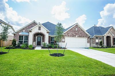 Rosenberg TX Single Family Home For Sale: $279,000