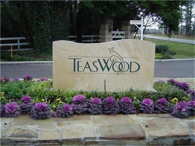 Conroe Residential Lots & Land For Sale: 10368 Enchanted Oaks