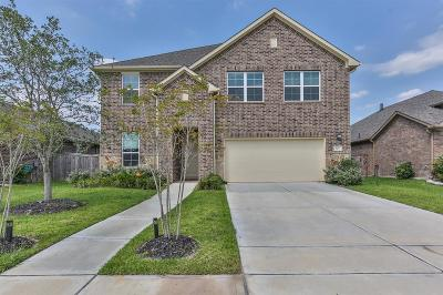 Pearland Single Family Home For Sale: 2213 Ashford Point Lane
