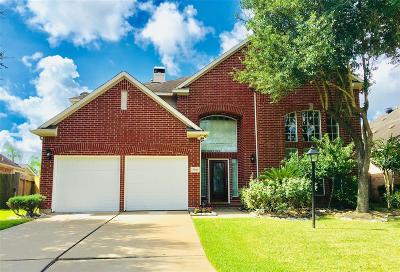 Houston Single Family Home For Sale: 3930 Shadow Cove Drive