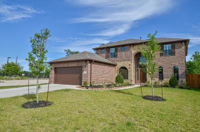 Tomball Single Family Home For Sale: 10915 Gallant Flag Drive
