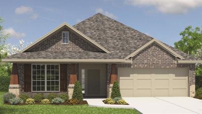 Rosenberg Single Family Home For Sale: 210 Verde Lake Way