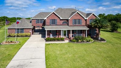 Baytown Single Family Home For Sale: 8703 Tumblewood Drive