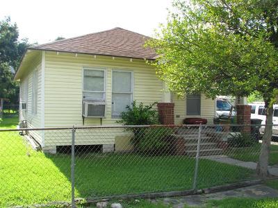 Houston Single Family Home For Sale: 704 Tabor Street