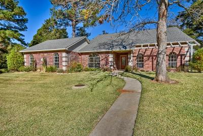 New Ulm Single Family Home For Sale: 1008 N Falls Drive