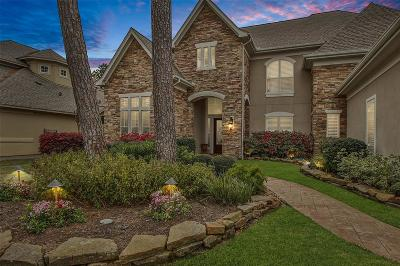 Spring Single Family Home For Sale: 16611 Churchhill Falls Court