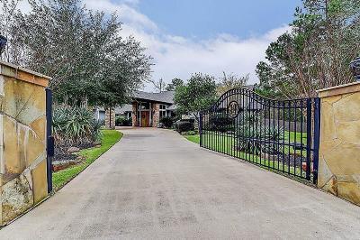 Magnolia Single Family Home For Sale: 12302 Post Oak Court Court