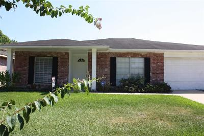 Sugar Land Single Family Home For Sale: 13823 New Village Lane