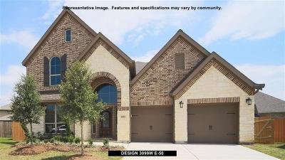 Manvel Single Family Home For Sale: 2230 Bayleaf Manor Drive