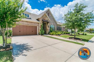 Katy Single Family Home For Sale: 4622 Magnolia Summit Lane