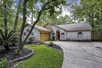 Kingwood Single Family Home For Sale: 2914 Big Meadows Drive