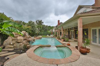 Houston Single Family Home For Sale: 15907 Bayou River Court