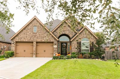 Richmond TX Single Family Home For Sale: $275,000