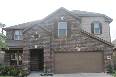 Pearland Single Family Home For Sale: 3145 Morgan Meadow Lane