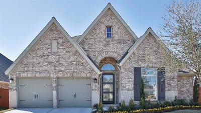 Fort Bend County Single Family Home For Sale: 11100 Lowthorpe Lane