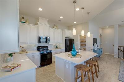 Porter Condo/Townhouse For Sale: 22320 Misty Woods Lane
