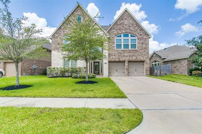 Shadow Creek Ranch Single Family Home For Sale: 2908 Silhouette Bay Drive