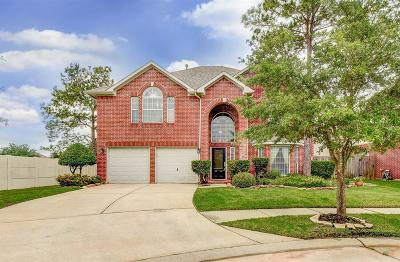 Tomball Single Family Home For Sale: 11930 Canyon Rock Lane