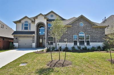 Tomball Single Family Home For Sale: 10707 Silver Shield Way