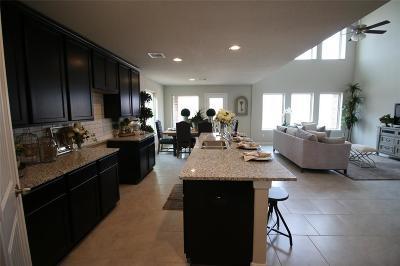 Rosharon Single Family Home For Sale: 10311 Muir Peak Drive