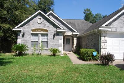 Montgomery County Single Family Home For Sale: 18573 Summer Hills Boulevard