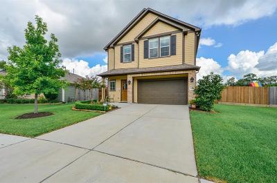 Houston Single Family Home For Sale: 1104 Hackney Street