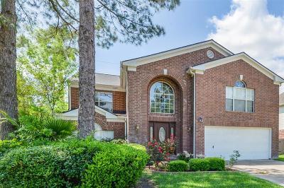 Houston Single Family Home For Sale: 3247 Eagle Ridge Way