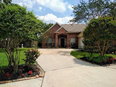 Tomball Single Family Home For Sale: 12207 Friardale Court