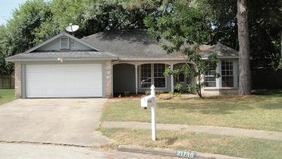 Katy Single Family Home For Sale: 21730 Park Brook Drive