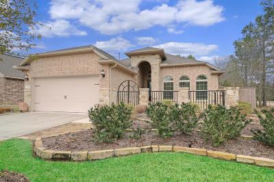 Montgomery Single Family Home For Sale: 206 Southern Iris Court