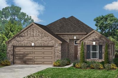 Pearland Single Family Home For Sale: 3904 Honey Hill Lane