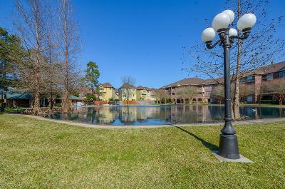 Kingwood Condo/Townhouse For Sale: 2815 Kings Crossing Drive #117
