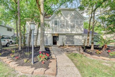Spring Single Family Home For Sale: 17902 Deep Brook Drive