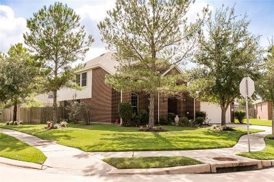 Single Family Home For Sale: 8419 Roland Canyon Drive