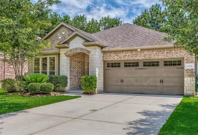 Porter Single Family Home For Sale: 20160 Bitter Root Drive