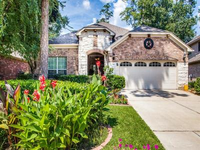 Single Family Home For Sale: 151 Clearmont Place