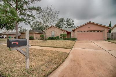 Houston Single Family Home For Sale: 10610 Sageyork Drive