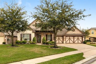 Cypress Single Family Home For Sale: 9923 Double Bayou Court